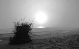 Lanbroa hondartzan (Fog in the beach)