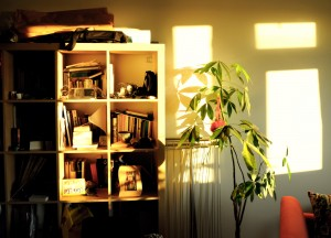 Etxeko apalak (Shelves at home)