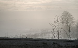 Goiz lanbrotsua (Foggy morning)