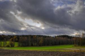 Landa (Field)