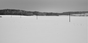 Elurra eta basoa (Snow and forest)