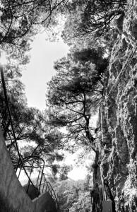 Pasabidea (Track)