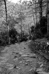 Bide zaharra (Old track)