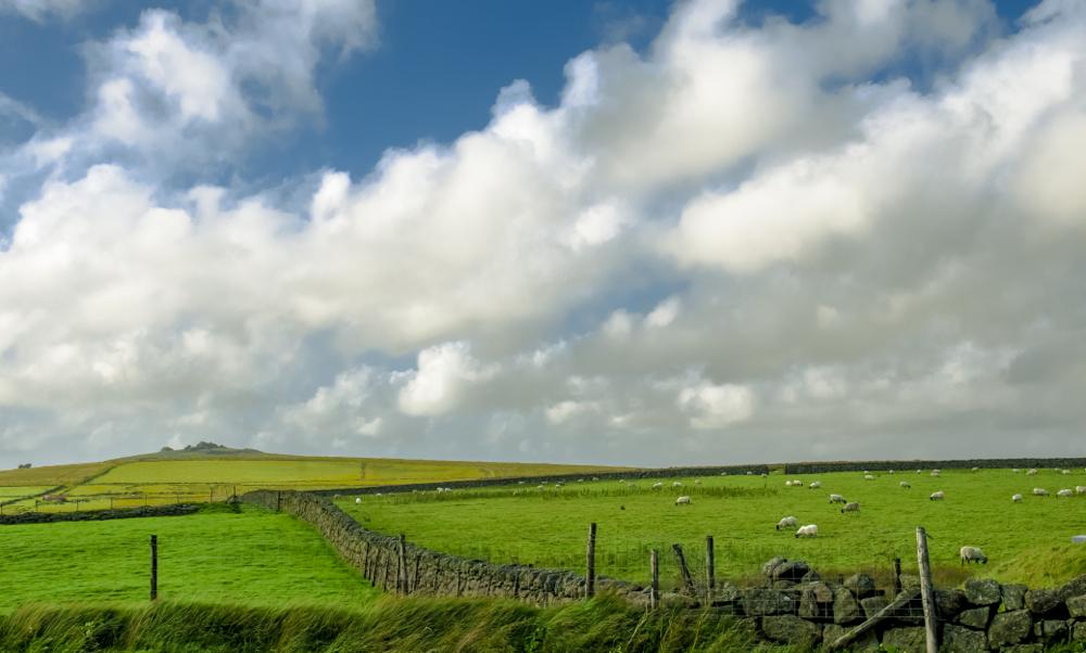 Dartmoor5
