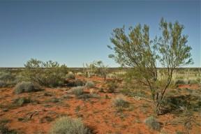 Outbacka3
