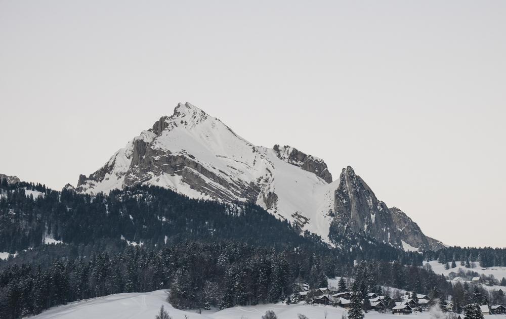 Toggenburg_Urteberri2015_2