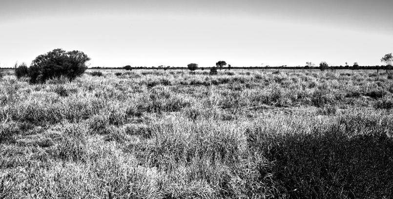 Outbacka6