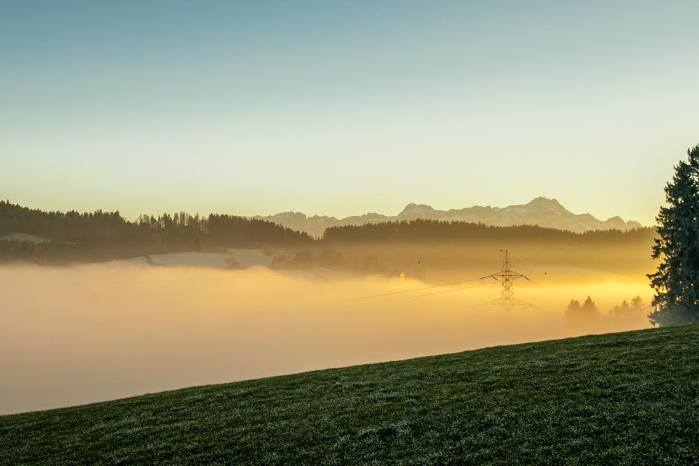Lanbroari eguzkiak fereka (Sun caresses the fog)